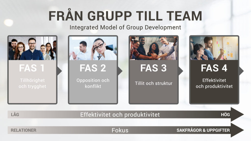 Modell faser grupputveckling IMGD integrated model of group development exempel